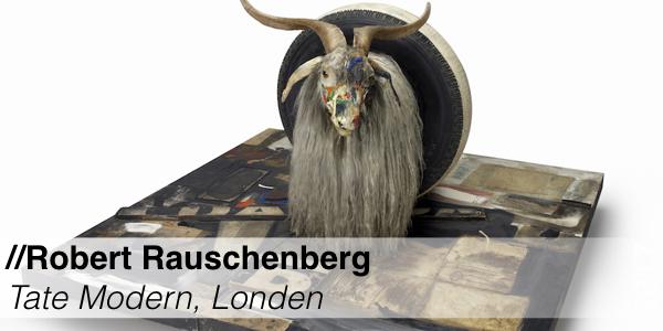 Tentoonstelling - Tate Modern - Robert Rauschenberg