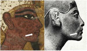 Overeenkomst tussen de muurschildering en een beeld van Nefertiti