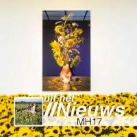 Zonnebloemen voor MH17