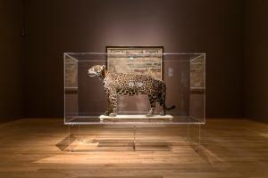 Frans Post: Dieren in Brazilië in het Rijksmuseum. Foto: Olivier Middendorp