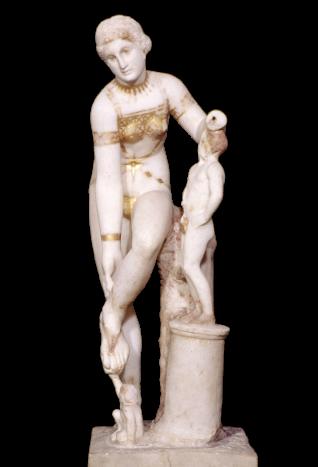 Venus in Bikini