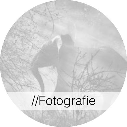 Kunstgeschiedenis - Fotografie