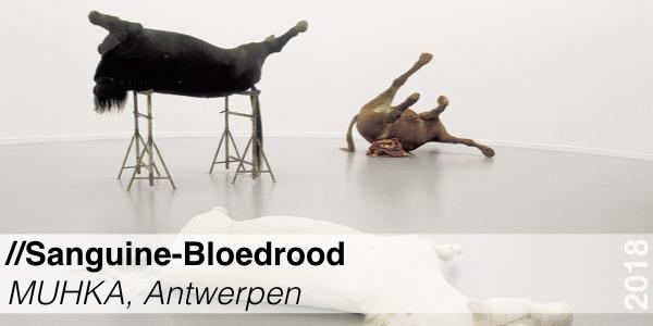 Tentoonstelling - Sanguine - MUHKA Antwerpen