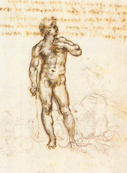 Leonardo - Schets van David