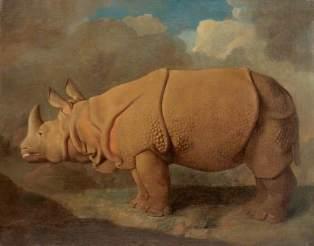 George Stubbs - Neushoorn